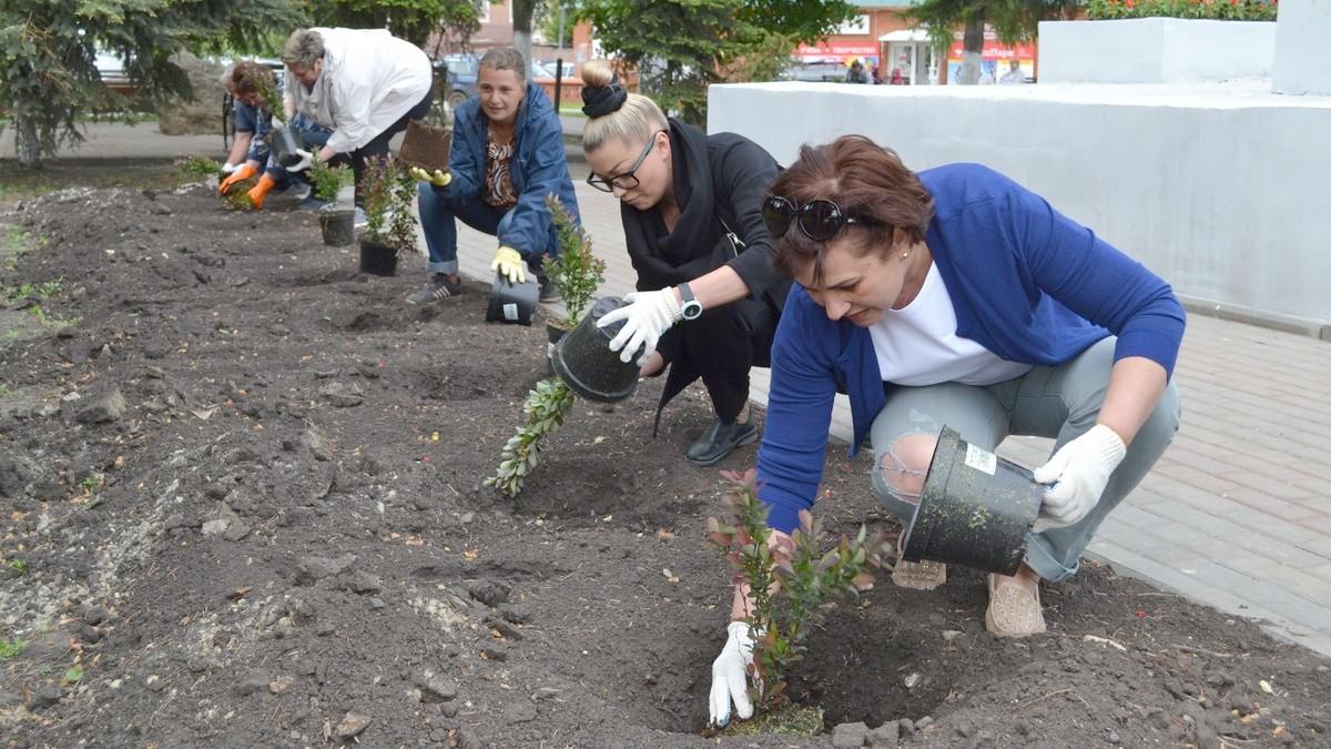Когда сажать цветы и деревья