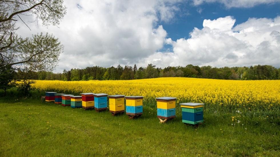 Информация для сельхозтоваропроизводителей