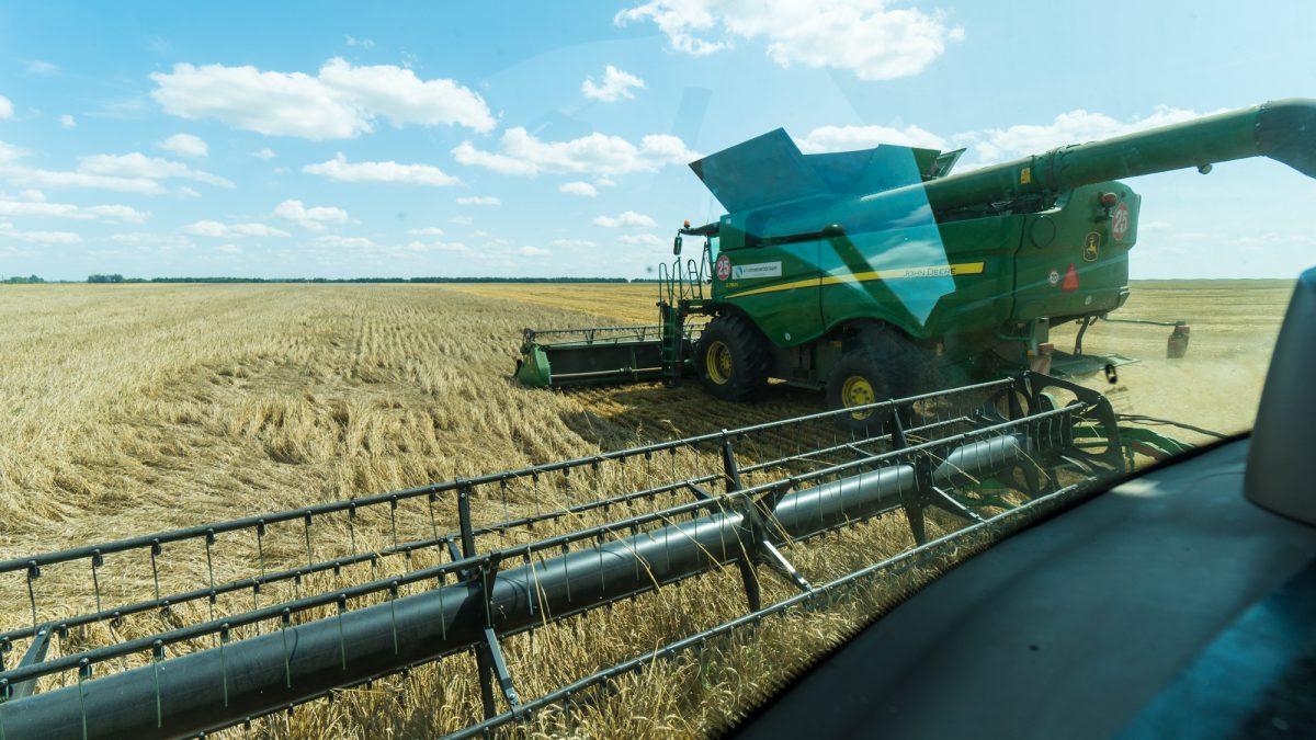 Район элеватор рязань элеваторы пшениц