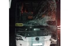 avtobus_oblozhka