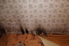 пожар Поляны (3)