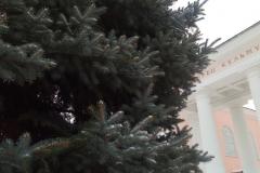 елка 1