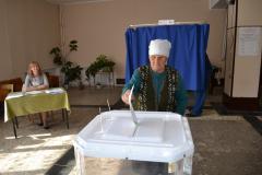 выборы пителино7