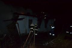 Пущино пожар (2)