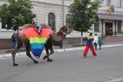 ладья верблюд