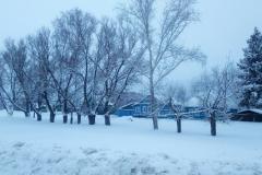 снег3