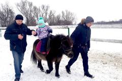 кони14