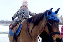 кони15