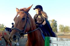 кони5