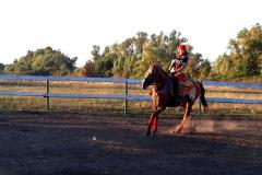 кони7