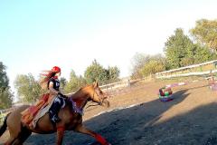 кони8