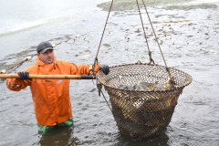 рыбхоз пара2