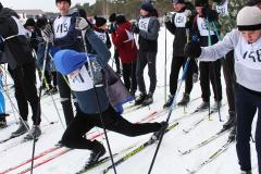 Сараи Гракову лыжня 3