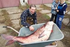 Рыба (1)