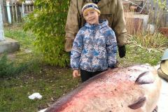 Рыба (3)