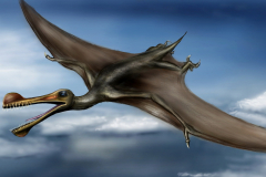 ancient_animals_dinosaurs_ornithocheirus_flight_534340_2560x1440