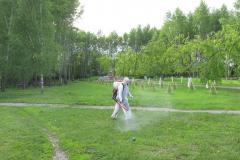 obrabatyvayut-park-ot-kleshhej