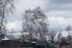 silnyj-veter