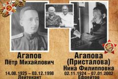 shevlyakova-agapovy