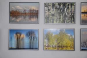 Выставка Отражения15