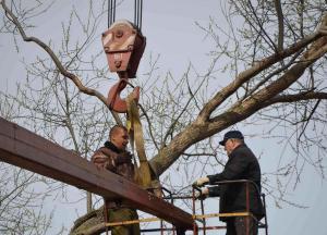 дерево в сапожке9