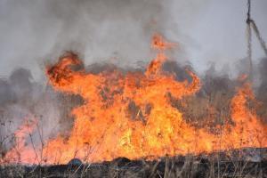 пожары в сасове1