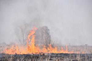 пожары в сасове2