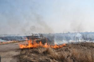 пожары в сасове3